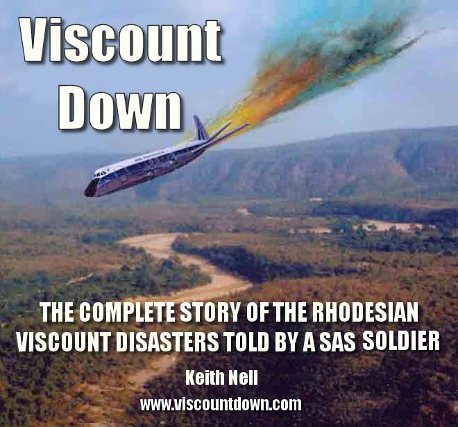 Viscount Down - Book Synopsis by Keith Nell